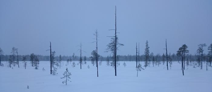 premiere Finlande
